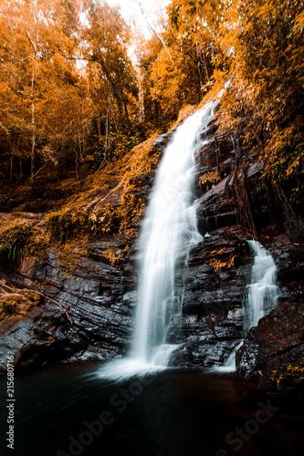 Deurstickers Watervallen Moody Jungle Waterfall