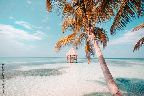 Foto op Plexiglas Strand Belize Caye relaxation