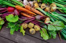 Freshly Harvested Vegetables O...