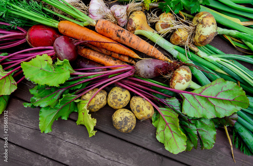 Fotobehang Groenten Freshly harvested vegetables on wooden background