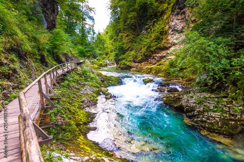 Naklejka premium Wąwóz Vintgar, Słowenia. Rzeka w pobliżu jeziora Bled z drewnianymi szlakami turystycznymi, mostami nad rzeką i wodospadami. Turystyka w parku narodowym Triglav. Świeża natura, błękitna woda w lesie. Dzikie drzewa