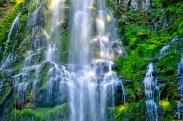 Fototapeta Wodospad Cascading Water at Proxy Falls