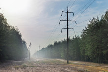 Forest Glade With Power Transmission Line Right-of-way. Electrical Supply Wires In Fog At Early Morning
