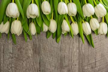 white tulips with green leaves on a wooden background. birthday. mothers Day. Christmas. Valentine's Day.