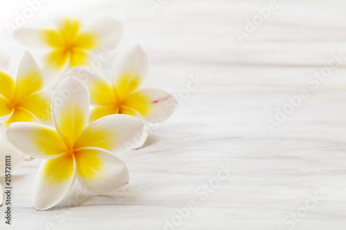 Poster Frangipanni Frangipani flower on white background