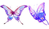Fototapeta Motyle - blue butterflies design, isolated on a white background