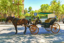 Horses With Their Bright Carriages Wait Patiently For Tourists Outside The Cathedral In Seville, Spain