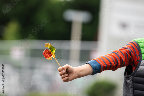 Fotografie, Obraz  Boy hand holding a colorful lollipop candy