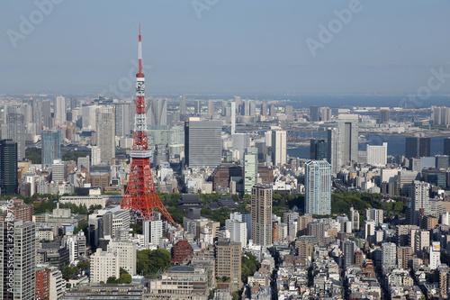 Fotobehang Tokyo Tokyo skyline with Tokyo Tower in Japan