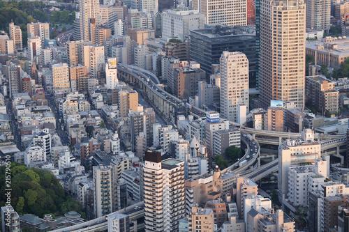 In de dag Aziatische Plekken Tokyo Japan city