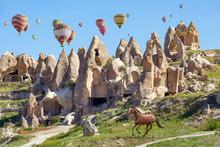 Hot Air Balloons And Running H...