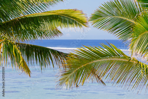 Staande foto Oceanië Bright summers day on the Coral Coast of Fiji
