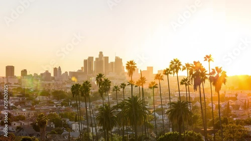 Photo  Downtown Los Angeles and Palm Trees at Sunset TimeSlice Timelapse