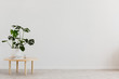 Leinwanddruck Bild - Plant on wooden table against white empty wall with copy space in living room interior. Real photo. Place for your furniture