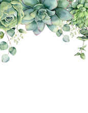 Watercolor Card With Succulents And Eucalyptus Leaves. Hand Painted Eucalyptus Branch, Green Succulents Isolated On White Background. Floral Botanical Illustration For Design, Print Or Background.