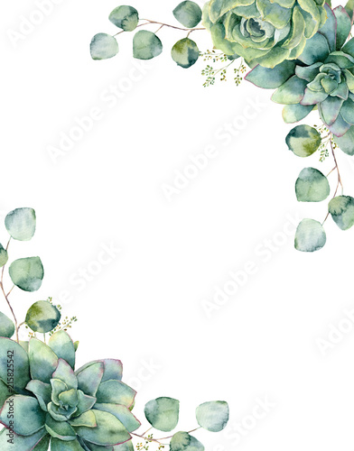 Fototapeta Watercolor card with exotic bouquet. Hand painted eucalyptus branch and leaves, green succulents isolated on white background. Floral botanical illustration for design, print or background. obraz
