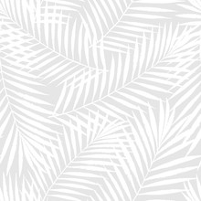 Summer Tropical Palm Tree Leaves Seamless Pattern. Vector Grunge Design For Cards, Web, Backgrounds And Natural Product