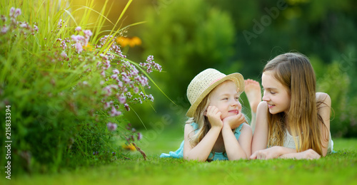 Foto  Two cute little sisters having fun together on the grass on a sunny summer day