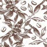 Seamles pattern with coffee plant and beans - 215834313