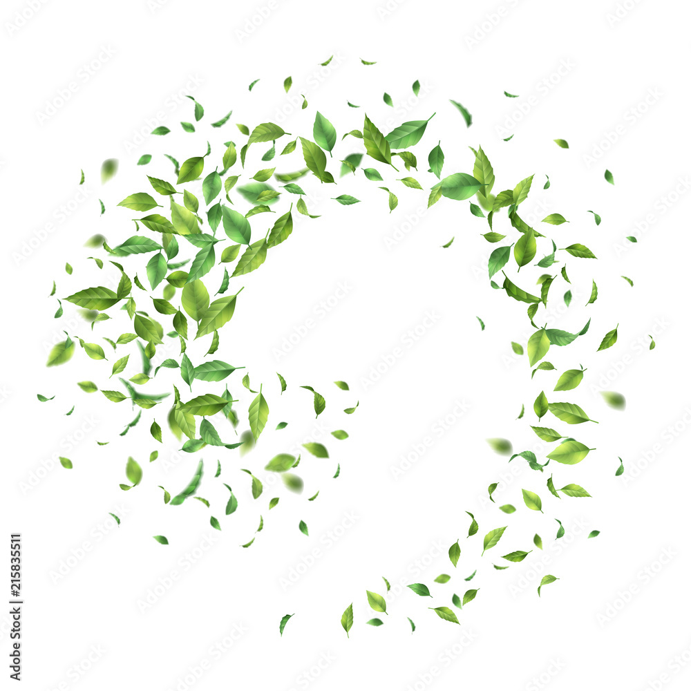 Fototapeta Green Flying Leaves