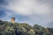 canvas print picture - Turm einer alten Burg im Wald auf einem Hügel
