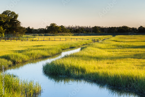 Tuinposter Oranje marshy field sunset
