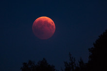 Lunar Eclipse - Blood Moon - Moon - Eclipse - Lunar