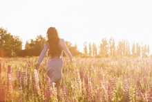 Woman At Sunset Flower Field. Back View No Face Shot