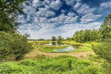 River Landscape Millingerwaard...