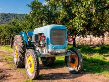 Old Light Blue Tractor For Agr...