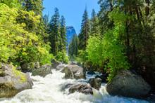 Merced River Landscape In Yosemite National Park. Whitewater Rapids. California, USA.