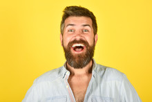 Happy Bearded Man. Man With Long Beard And Mustache. Bearded Man Smiling. Feeling And Emotions. Closeup Portrait Of Funny Bearded Man. Facial Expressions Concept. Yellow Background. Isolated.