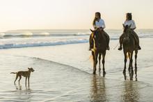 Teens Riding Horses At The Beach