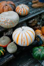 Decorative Pumpkins In Garden