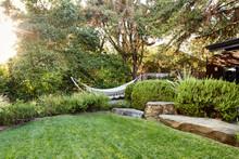 Hammock In Garden In Home Backyard