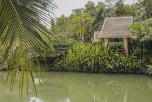 Tropical Lake In The Jungle With A Bungalow