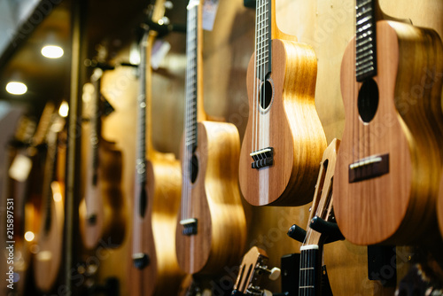 Fotografia  Portuguese ukuleles and cavaquinhos