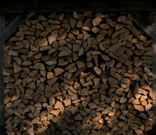 Chopped Wood Stacked With Beams Of Sunlight Falling On It.