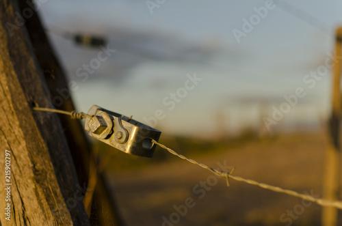 alambrado en campo de la provincia de Buenos Aires en la hora dorada Canvas Print
