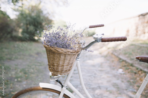 Foto op Canvas Retro Vintage bike in nature
