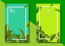 Leaves Green Tea Season Backgr...
