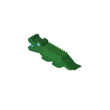 Croc Isometric Right Top View 3D Icon