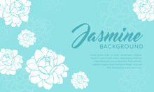 Jasmine Flower Background Vect...