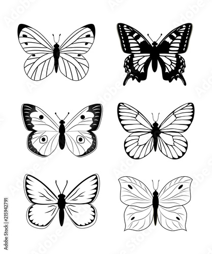 Photo sur Toile Papillons dans Grunge Butterfly silhouette icon set. Simple set of butterfly vector