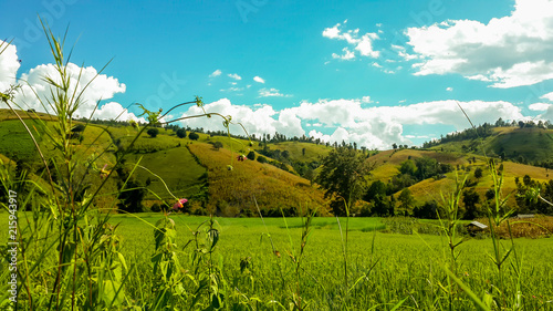 Foto op Plexiglas Turkoois Panoramic View Of Agricultural Field Against Sky in Chiang Mai Thailand.