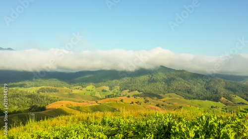 Foto op Aluminium Pool Panoramic View Of Agricultural Field Against Sky in Chiang Mai Thailand.