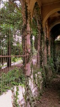 An Old Abandoned Garden In The Old Southern Town, Where Ivy And Other Wicker Plants Entwine The Arches Of The Alleys.