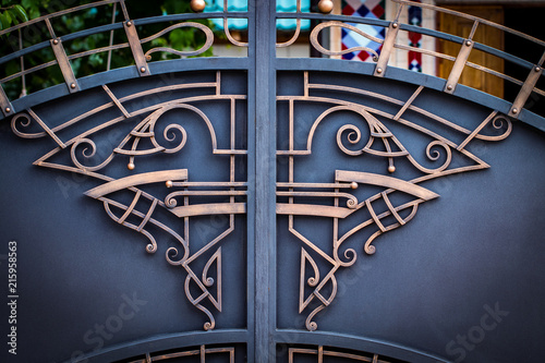 Photo sur Toile Papillons dans Grunge wrought-iron gates, ornamental forging, forged elements close-up