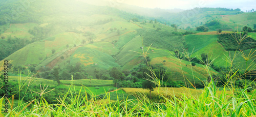 Poster Lime groen thailand mountain landscape shot at Chiang Rai
