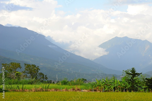 Fotobehang Wit Beautiful landscape of mountains and rice field in Hualien, Taiwan